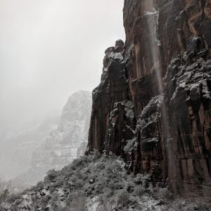 Zion National Park in the snow 2